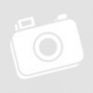 DRAGONPRO DP-iON7-002 7.4V 1600mAh 30C Li-ion Battery (1+1) 67x20mm